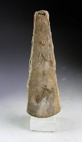 Choice thickbutted Danish Neolithic Axe, Lindoe-type, 3rd mill. BC