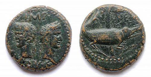 Augustus & Agrippa bronze Dupondius or As w Crocodile, Nemausus