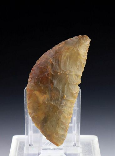 A Nearly Superb Danish Neolithick Flint sickle, 2400-2000 BC!