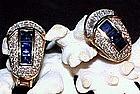 Exquisite Blue Sapphire/Diamond Earrings, 18K Gold