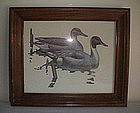 Brian K Wheeler Waterfowl/Duck Framed Print