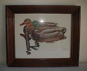 Brian K Wheeler Waterfowl/Duck Framed Print