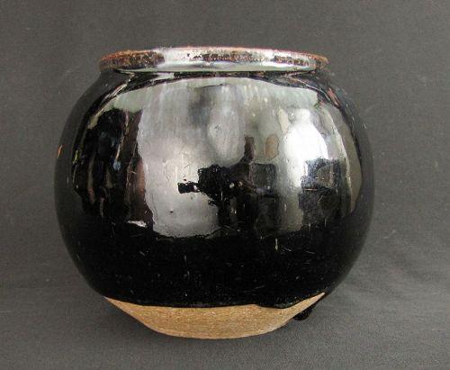 Cizhou Black Glazed Jar  �� ��窯
