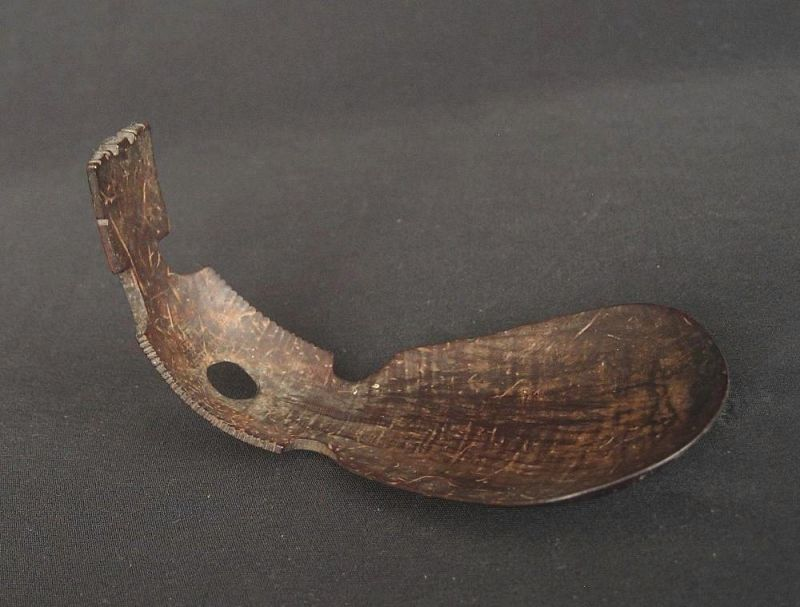 Timorese  Spoon