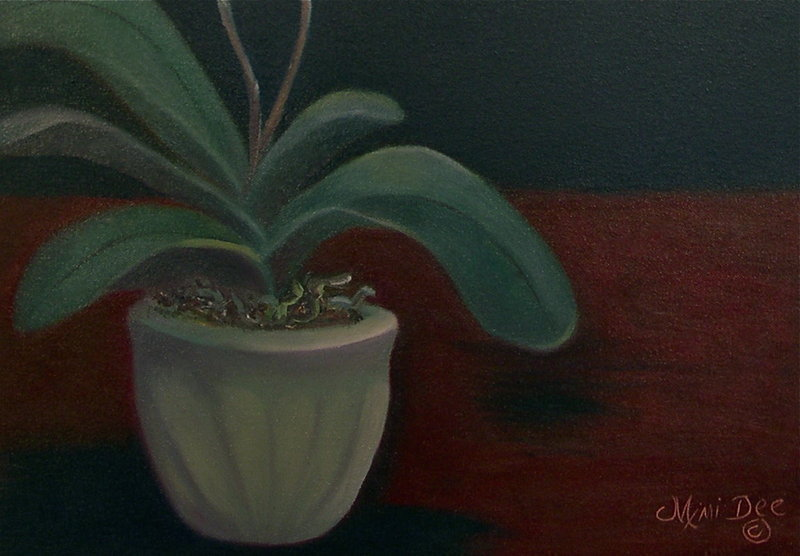 Signed American Oil OC Painting Orchid Phalaenopsis