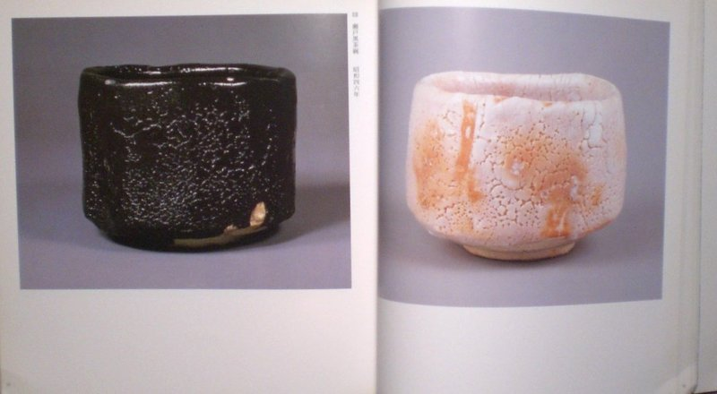The Works Of Toyozo Arakawa; Full Color Catalogue