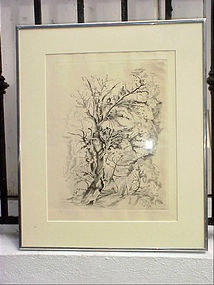 Mexican Engraving-F.Cantu--1948-signed