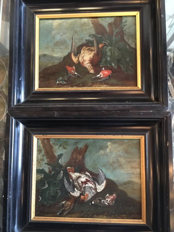 Pr Italian Old Master Oil Bird Paintings On Panel 18thc