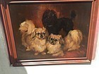 Dog Oil Painting  Of  Three Toy Breeds