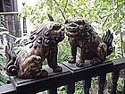 Carved Wood Japanese Shishi dogs, rare pair.19thc