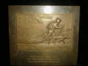 Swedish Dog Sledding Plaque, Bronze signed