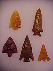 Florida Tranlucent Agatized Coral Arrowheads
