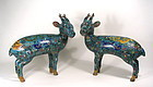 Large Pair of Chinese Cloisonne Deer