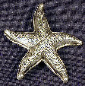 Beau Sterling Starfish Pin
