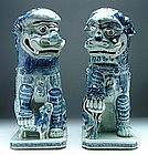 A Pair Blue and White Models of Lions