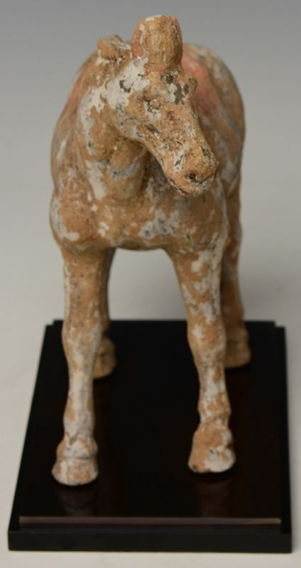 Tang Dynasty, Chinese Painted Pottery Walking Horse