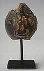 12th Century, Khmer Pottery Rabbit Head