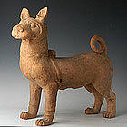 Rare Big Han Dynasty Pottery Dog w/ TL Test