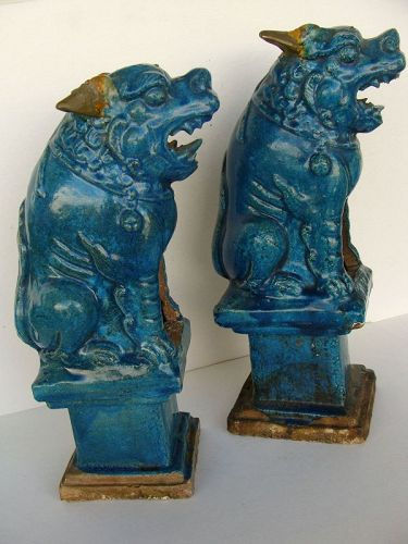 Turquoise Seated Lion (Pair)