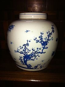 Chinese blue and white tea caddy container