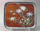 JAPANESE MEIJI PERIOD CLOISONNE PLATE