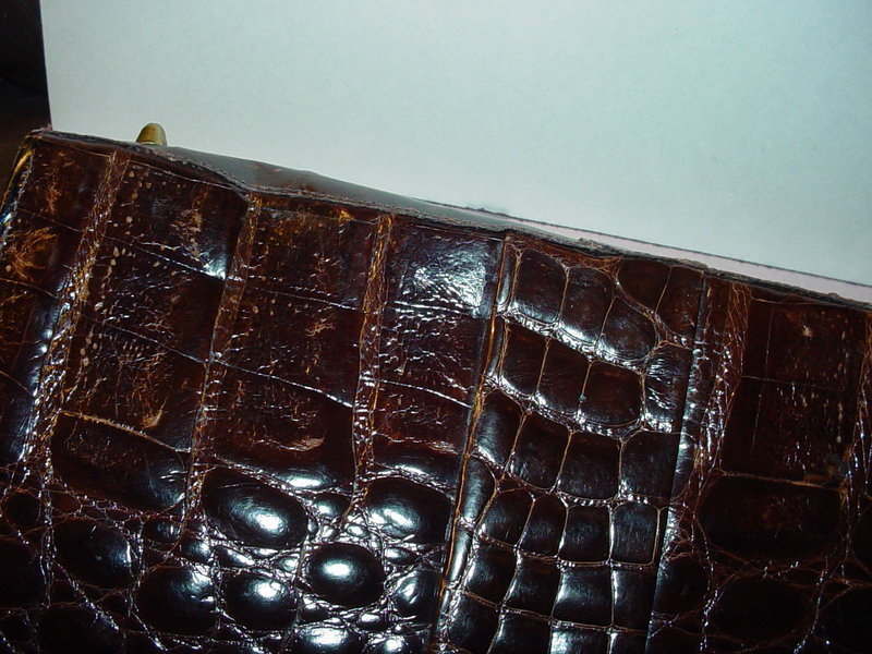 Vassar Genuine Alligator Bag