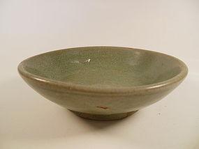Song Dynasty Celedon Dish