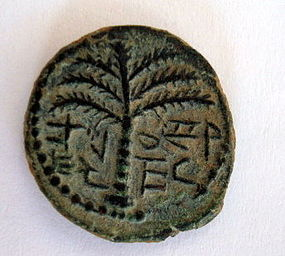 A HOLY LAND BRONZE COIN OF SHIMON BAR-KOCHBA
