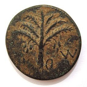 A BRONZE COIN OF THE BAR KOCHBA REVOLT