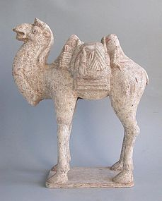Chinese Early Tang Dynasty Pottery Camel with Back Pack