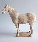 Fine Chinese Tang Dynasty Painted Pottery Horse with Oxford TL Test