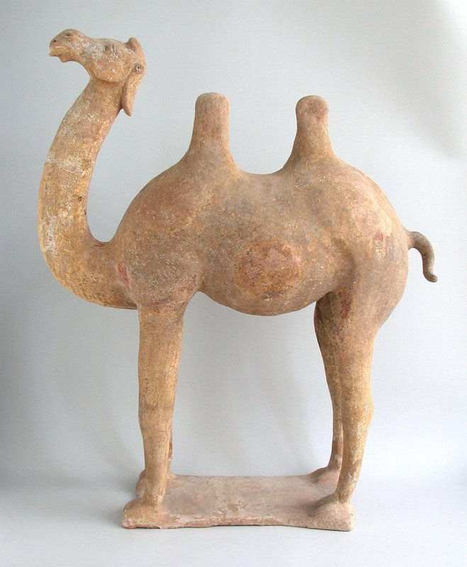 LARGE Chinese Tang Dynasty Painted Pottery Camel with TL Test
