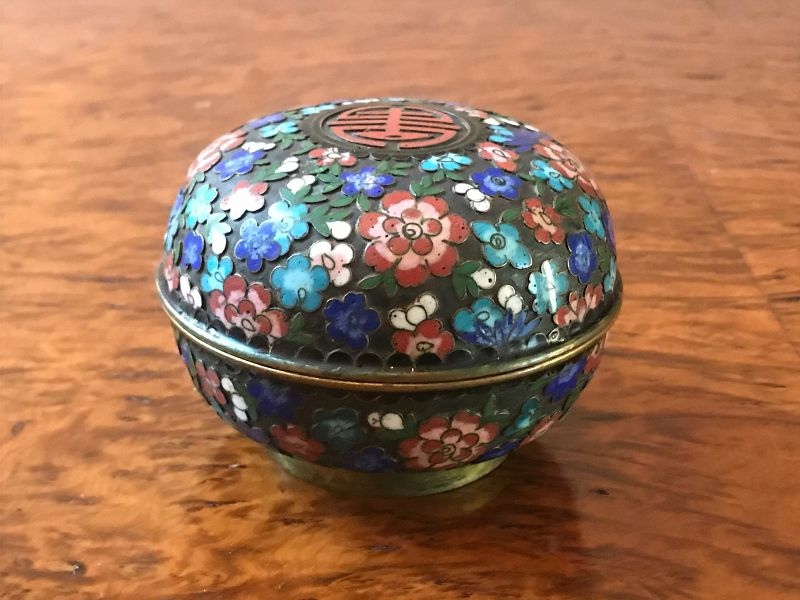 Chinese Raised Cloisonne Covered Box, Flowers and Stylized Character