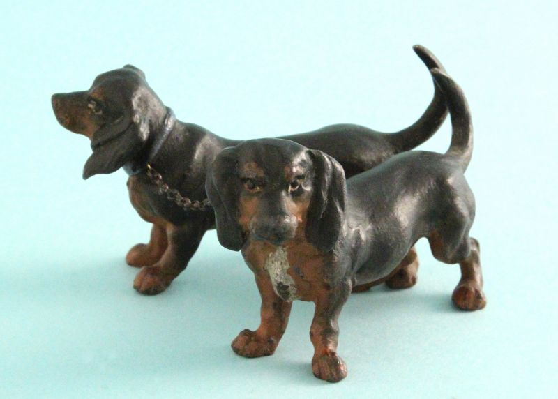 Vienna Bronze Dachshunds, Male and Female