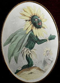 Mid-19th C African Sunflower Colored French Engraving