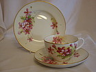 Royal Worcester cup & saucer and plate signed H Clare