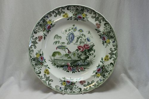 Spode transfer printed plate Macaw pattern
