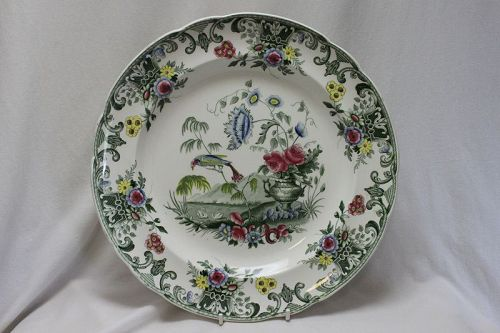 Spode printed plate Macaw pattern