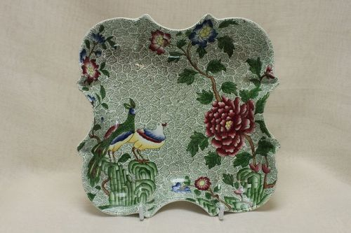 Copeland Spode dish from dessert set Peacock and Parsley pattern
