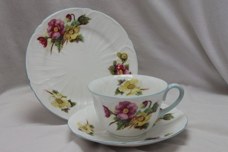 Shelley cup saucer and plate Oleander shape pattern 13427
