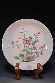 Chinese Enameled Porcelain Bowl, Chrysanthemum