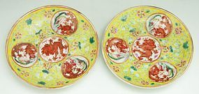 19th C. Pair of Chinese Famille Rose Porcelain Plates.