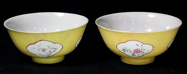 Pair of Chinese Enameled Porcelain Bowls.