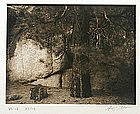 Ansel Adams orig. photograph Rocks & Tree Portfolio VII