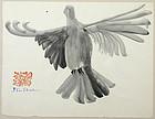 Ben Shahn watercolor painting - Dove