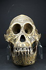 Important & Rare Orang-Outang Adorned Skull, Dayak Peoples