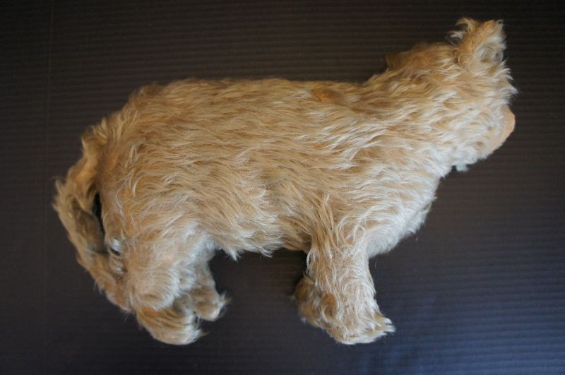 Antique life size mohair cat with glass eyes