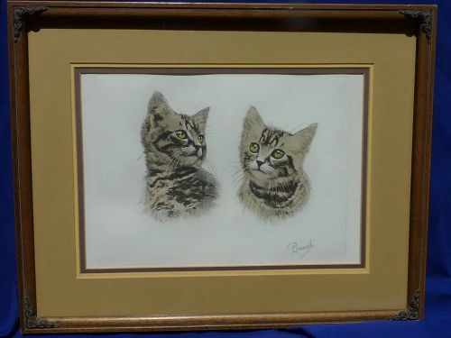 Studies of a tabby cat etching with aquatint print signed in pencil Danet