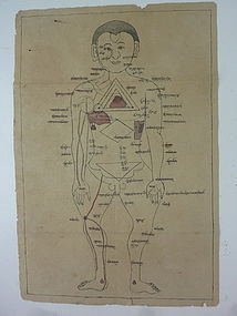 MONGOLIAN 2 MEDICAL FIGURE DRAWINGS