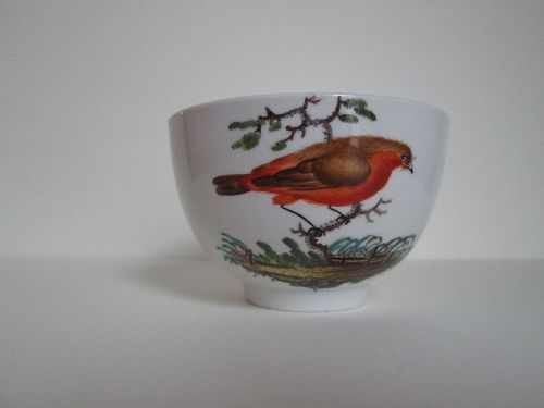 German teacup with hand painted bird, circa 1780 prob. Ansbach